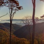 Smoky Mountain Land Surveying - Hooper Bald Survey